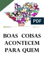 BOAS  COISAS.docx