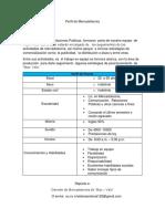 Perfil de Mercadotecnia de america.docx