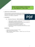 Trujillo Practicante 0015-2019 - BASES-1.pdf