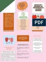 folleto reconocer y entender los sentimientos de las demas personas estes si ne.docx
