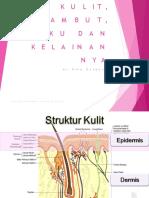 Anatomi  Fisiologi kulit dan rambut
