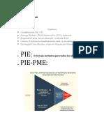 PROGRAMA DE.docx