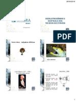2019328_10220_Aula+4+-+BIOELETROGENESE.