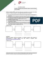 5B_CADENAS_CAUSALES_material_estudiante_2018-1__.docx