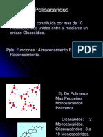 Almidon Presentación Para Clases 1
