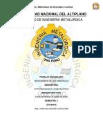 UNIVERSIDAD-NACIONAL-DEL-ALTIPLANO.docx