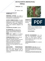 Ficha de Planta Medicinal11