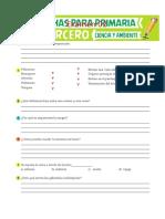 Examen-02-de-Ciencia-y-Ambiente-para-Tercero-de-Primaria.docx