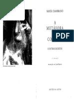 A metáfora do coração.pdf