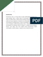 informe-de-practtricas-pre-1.docx