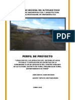 Perfilde Proyecto Personal (1)