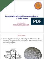 Areas cerebrais