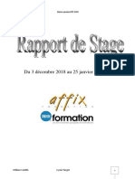 rapport de stage williams castillo