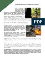 FACTIRES DE LA ACCION HUMANA QUE GENERAN VUNERABILIDAD AMBIENTAL EN GUATEMALA.docx