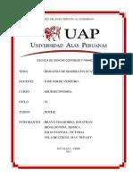 DEMANDA DE MADERA EN UCAYALI 2017.docx