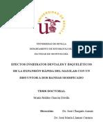 ERM1.pdf