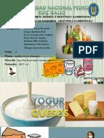 Exposición Yogurt y Queso