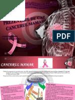 Cancer Mamar