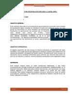 DPL-ENSAYO-DE-PENETRACION-DINAMICA-LIGERA-.docx