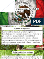 Agricultura Orgánica_¿Oportunidad de Negocio Para México
