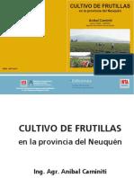 INTA CRPatagoniaNorte EEABariloche Caminiti a Cultivo Frutillas