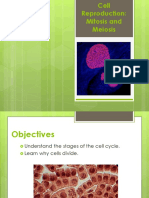 Cell Reproduction - Mitosis&Meiosis.ppt