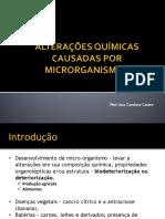 Aula 5 Alterações Químicas Causadas Ro Microrganismos