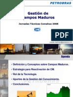 trabajoGestion de Campos Maduros_PESA [Modo de compatibilidad] [Reparado].ppt