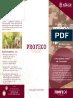 Triptico Servicio Social Profeco Nuevo Leon