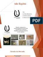 Presentación Distribucion Loliando (1)