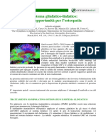 Sistema Glinfatico Linfatico Osteonews