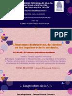 2. DIAPOSITIVAS.pptx