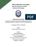 Proyecto de Tesis - Elizabeth Salazar Cahuas 23-11