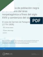 afro en carmen de patagonia.pdf
