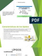 biomoléculas Lípidos