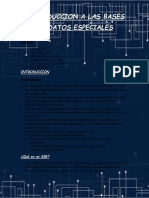 Bases de datos Espaciales.docx