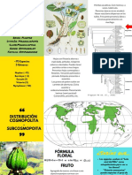 Familia Nymphaeaceae