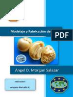 Especialidad Modelaje y Fabricación de Jabón- Angel Morgan Salazar