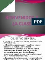 INTRODUCCION AL SISTEMA PIVOT martes.pptx