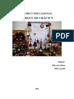 Proiect Educational Targul de Craciun1