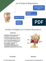 Cambios en El Sistema Respiratorio