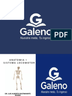 Anatomía 1 - 15Ene.pdf