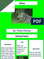 Zebra Project.pptx