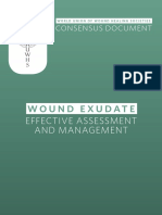Wuwhs Consensus Document Wound Exudate Effective Assessment and Management