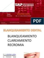 07-BLANQUEAMIENTO