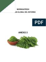 Anexo 2-Analisis Global.