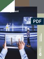 Folleto_M_PROJECT_2019_I (4).pdf