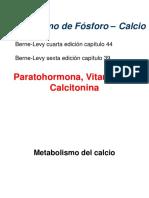 Metabolismo P CA