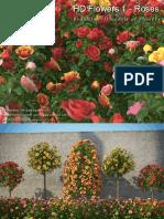 Hd Flowers 1 Roses