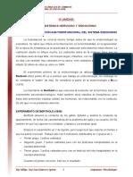 15 Organizacion Anatomofuncional Del Sistema Endocrino Lectura